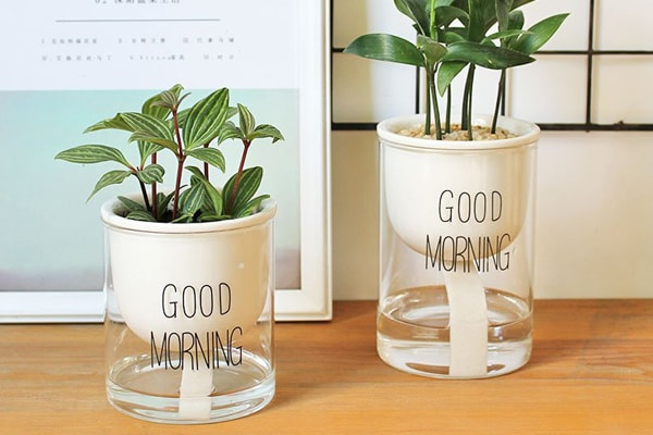 A plant pot with a self-watering system